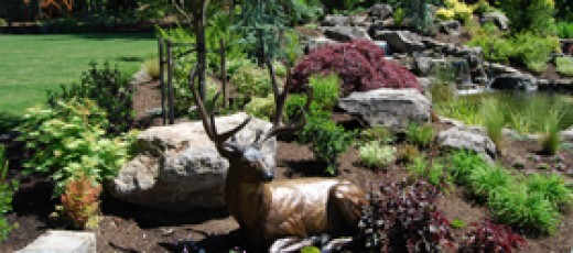 Landscaping Creating Quality Curb Appeal HubPages