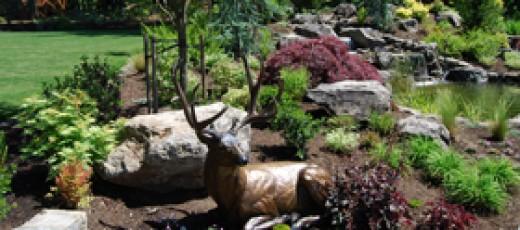 Landscape design with deer statue and boulders