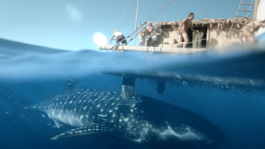 The threat from the deep is real in Kon-Tiki