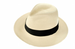 A good desert hat - Wide brimmed, light colored,  and breathable.