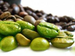 Do you take Green Coffee Bean Extract?