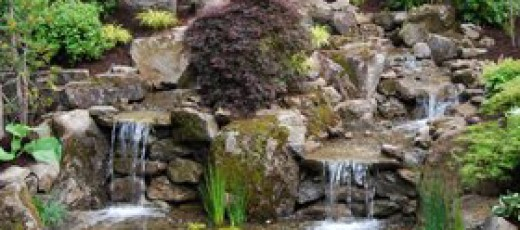Waterfalls with rocks and plants