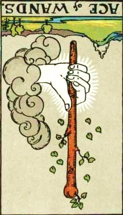 Ace of Wands reversed; attribution page bottom