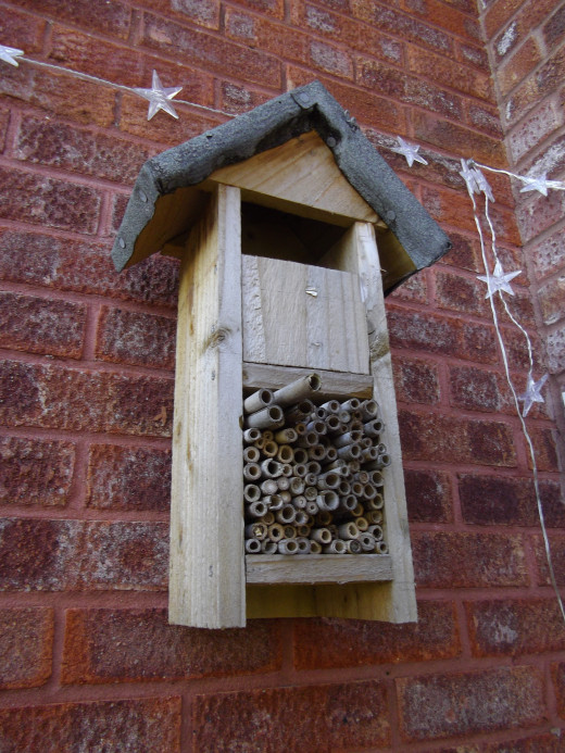 Wall hanging insect house.