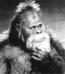 Bigfoot: Fact or Fiction