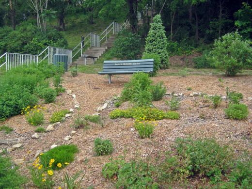 Becky's butterfly garden