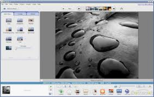 Screenshot of Picasa software.