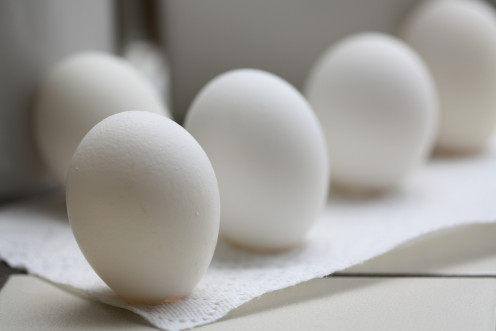 Eggs are quality lean protein. In fact, they are the perfect protein.
