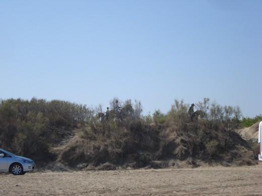 Riumar Beach, Spain - Dog's Beach