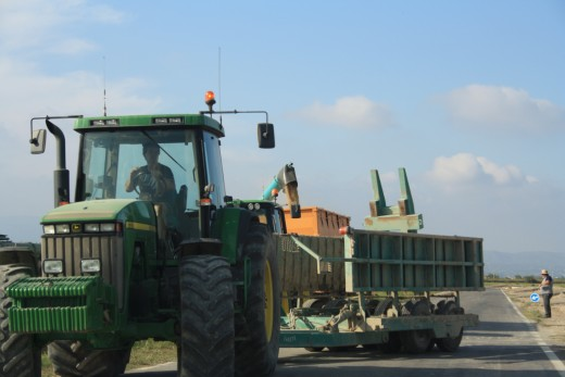Rice Fields - L'Ampolla, Spain - Rice Harvest