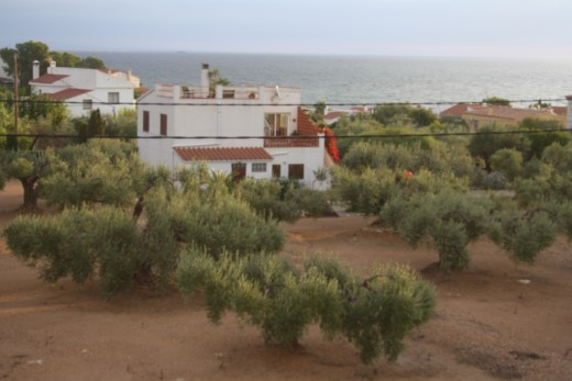 The Sunrise - L'Perrelo, L'Ampola, Spain - viewing from the solarium - Another Sunny Day Has Come