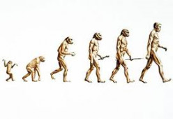 Is Evolutionary Theory Harmful?