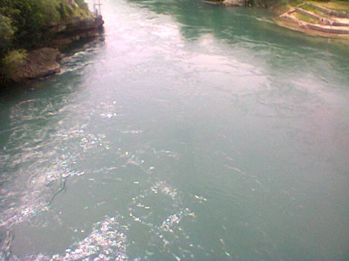 The river has green water.