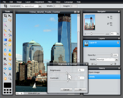 Screen Capture: Pixlr Editor (Advanced)