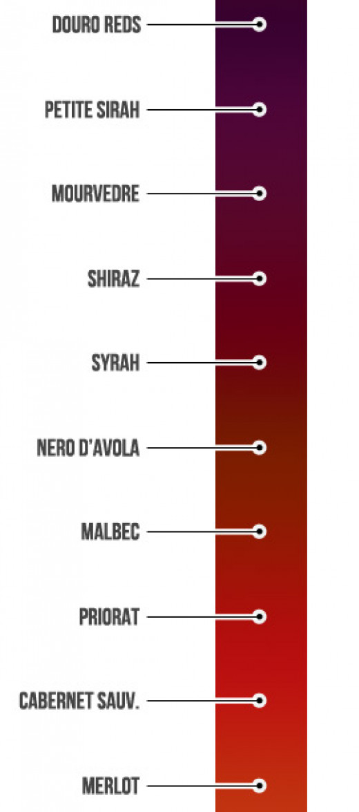 Types of grapes and the color of the wine.
