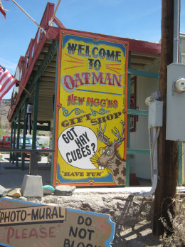 Just one of many very funny signs hanging up on a building in Oatman, Arizona