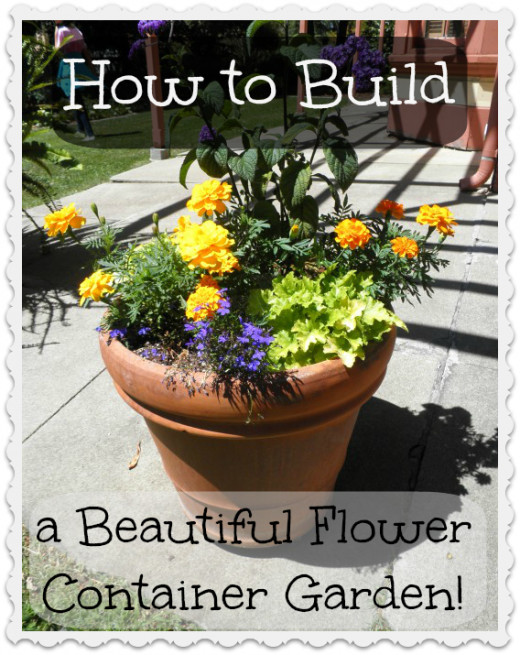 How to build a a beautiful grouping of annuals and perennials in a container garden.