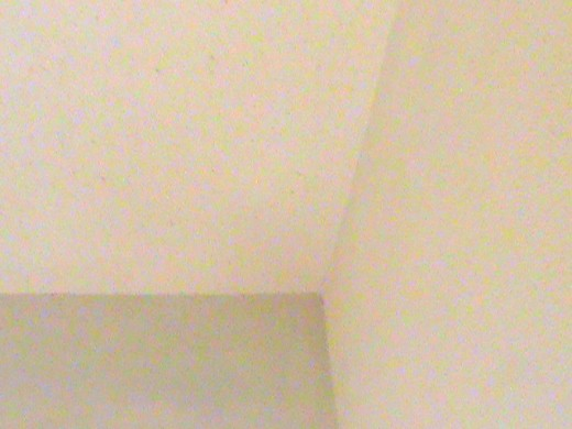 Finished Ceiling