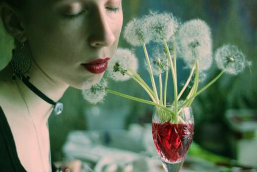 Daytime Dandelion Wine 1