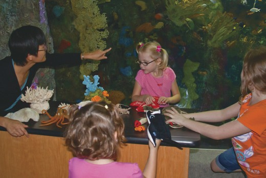 Teaching Science - Aquarium