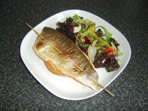Rainbow trout fillet grilled on a skewer is served with bruschetta and simple salad