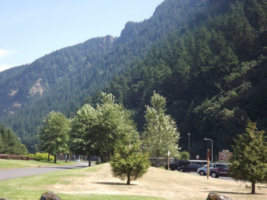 One last look at the evergreen landscape just east of Multnomah Falls.
