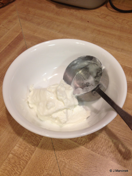 Store bought cow's milk yogurt as starter