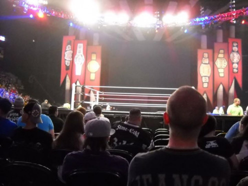 This is the view 10 rows from the ring. I was standing while taking this.