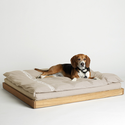 Simple and comfortable bed for dogs. Amazing, I love it!!