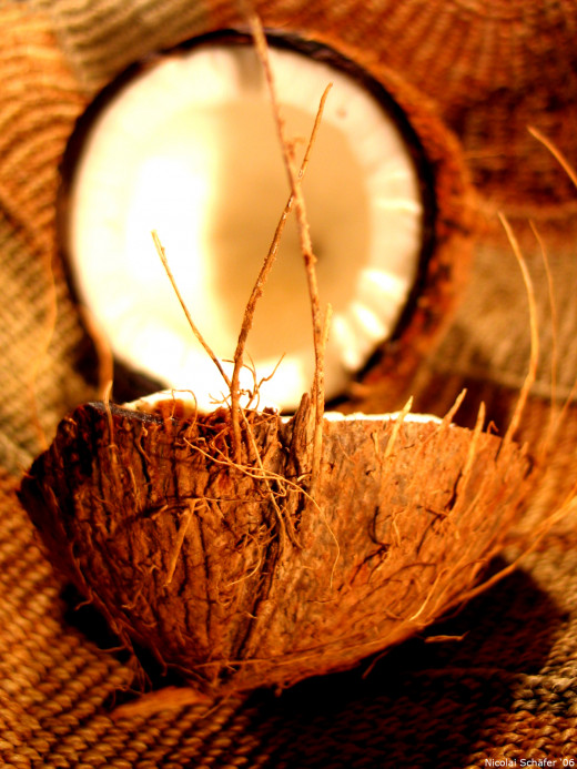 A raw coconut!