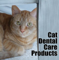 Cat Dental Care Products