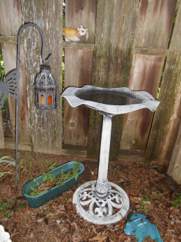 Bird bath by hanging lantern