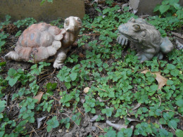 Turtle and frog figurines
