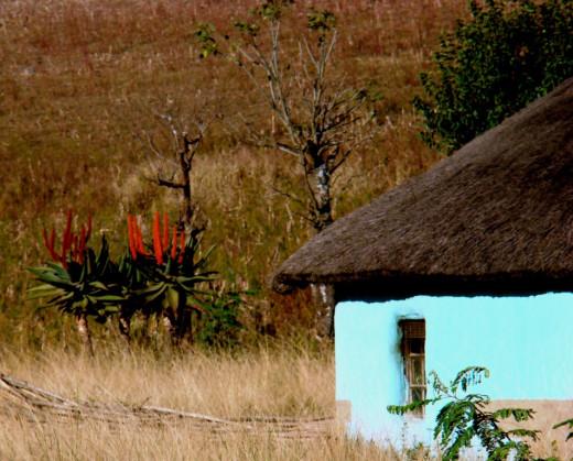 Tribal hut in Transkei