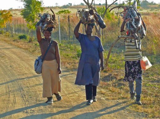 Swazi Women on way home