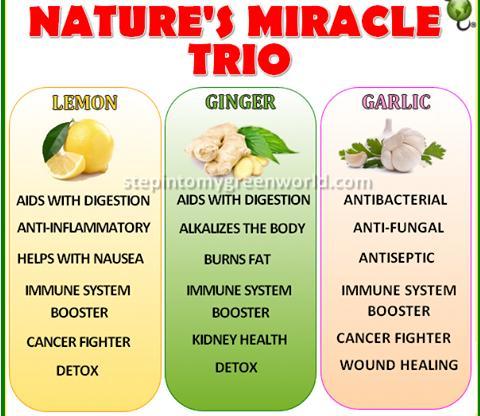 Three Wonderful Plant Foods