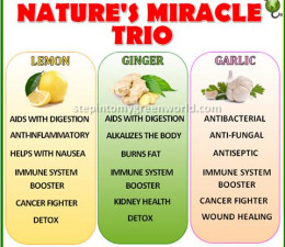 Three Wonderful Plant Foods