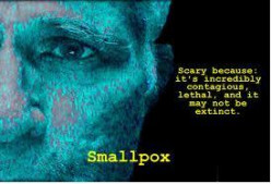 Biological Weapons: Could Smallpox Be Used as a Weapon?