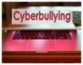 Adult Cyberbullying