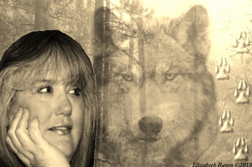 Wolf Animal Spirit and Your Intuition