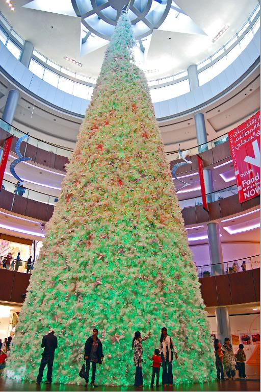 This Mall Christmas trees is very tall.