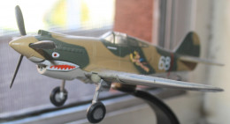 A MODEL OF THE P-40. THIS PLANE TOGETHER WITH PILOT WAS OBVIOUSLY A FLYING TIGER.