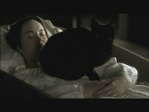 the setting and narrative style of edgar allan poe A drunk man kills his cat and it comes back to haunt him in poe's usual style, the  narrator of the story is the killer and we see things through his eyes quite a.