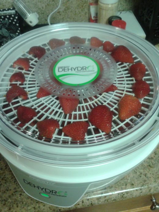 Put the lid on, plug it in, and walk away. (Don't eat all the strawberries before they're done dehydrating!)