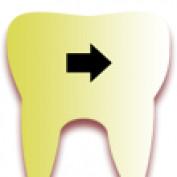 Dentists Hate Me profile image