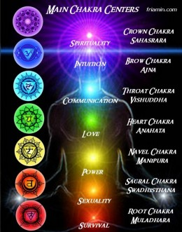 The seven chakras that exist within the soma (physical body)