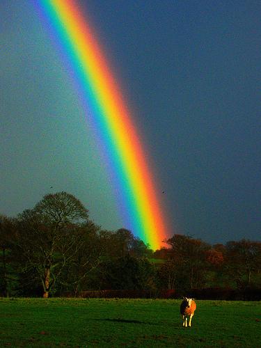 rainbow (colors enhanced) from Magic Foundry  Flickr.com
