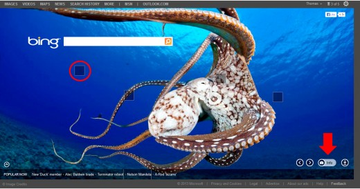 Bing's homepage displays a big blue octopus. A different photo is featured every day.
