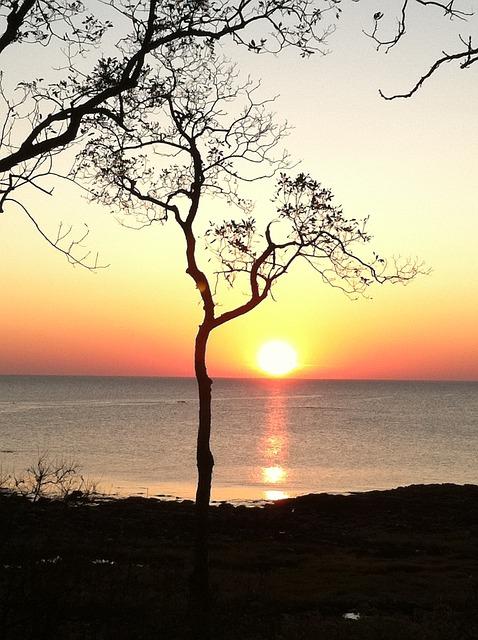 Sunrise and Peace