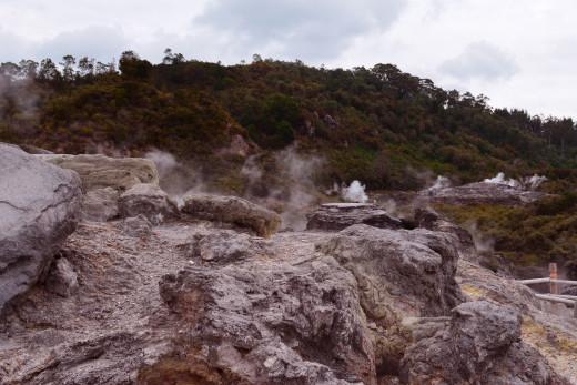 'Rotorua-New Zealand from Tony DeLorger